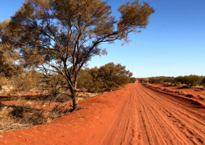 Towards Finke